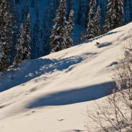 Some nice powder skiing on the evening sun