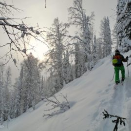 Good morning! Are you looking for some pow-pow riding?